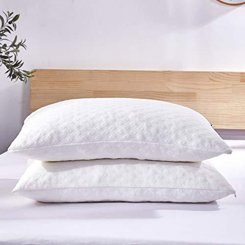 Top 10 Wapiti Pillows of 2021