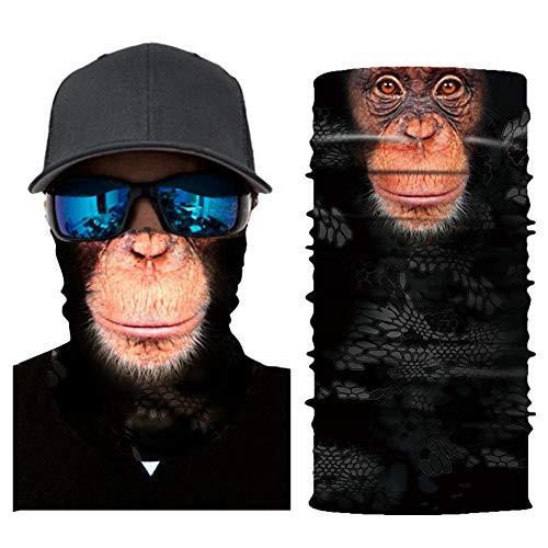 Top 10 Zkptops Face Mask Bandana of 2021