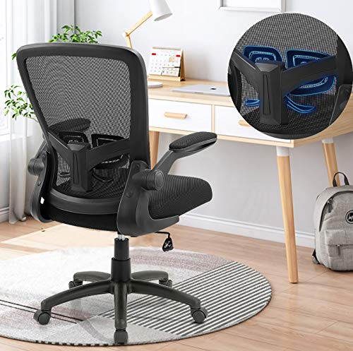 Top 10 Zlhecto Ergonomic Desk Chair of 2021