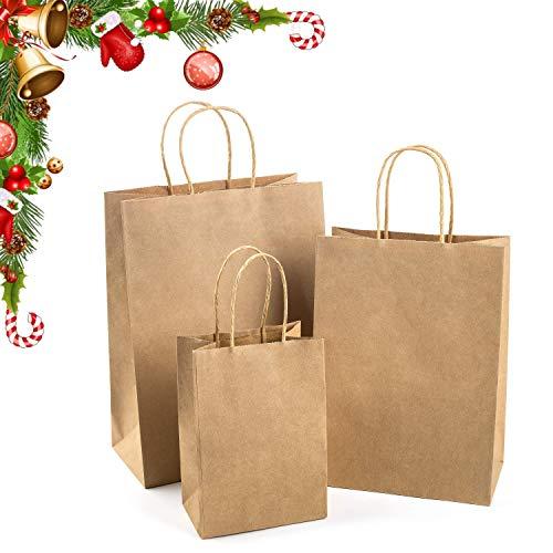Top 10 Wdc Industries Brown Paper Bags of 2021