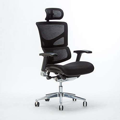 Top 10 Xchair Office Chair of 2021